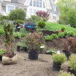 Stoney Brook | Landscaping Pre Site Preparation