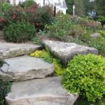 Stoney_Brook_Gardens_26