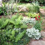Stoney Brook Landscaping-11
