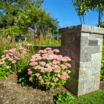 Stoney_Brook_Gardens-21