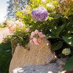 Stoney_Brook_Gardens-27