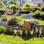 Stoney_Brook_Gardens-29