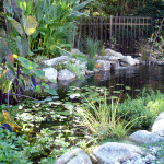Stoney_Brook_Water_Features-2