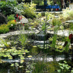 Stoney_Brook_Water_Features-5