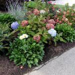 Stoney Brook Landscaping - Garden 2