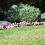 Stoney Brook Landscaping - Garden 3