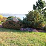 Stoney Brook Landscaping - Garden 5