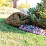 Stoney Brook Landscaping - Garden 6